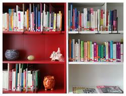 Foto: Bücherregale (Auswahl aus über 500 Fachbüchern mit Informationen zu vielen Frauenthemen)
