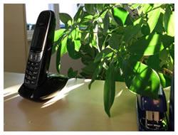 Foto: Telefon und Tacker auf einen Schreibtisch, im Hintergrund eine Pflanze, Sonnenschein